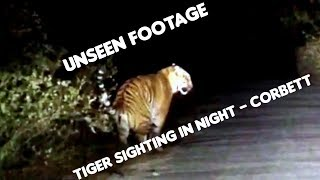 Tiger on Highway - Night Driving in Jim Corbett National park