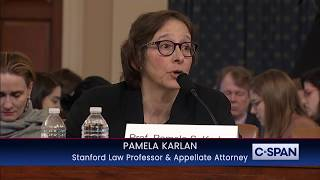 Professor Pamela Karlan references Barron Trump and later apologizes for it