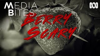 Download Lagu Berry Scary | Media Bites Gratis STAFABAND