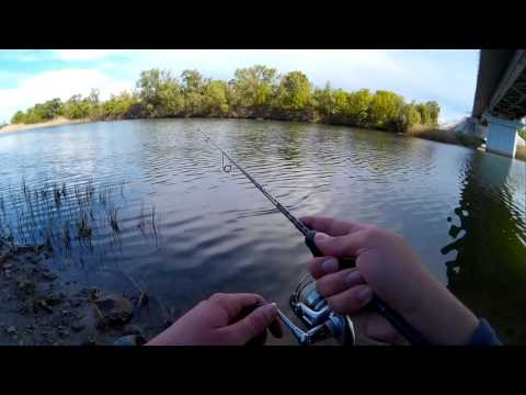ловля окуня на реке видео