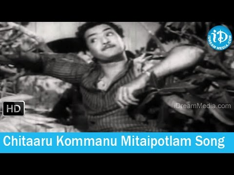 Kanyasulkam Movie Songs - Chitaaru Kommanu Mitaipotlam Song - Ghantasala Songs video