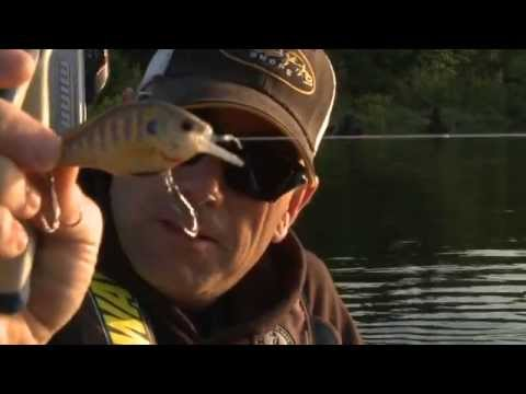Burning Square Billed Crankbaits Back to the Boat -  Facts of Fishing THE SHOW