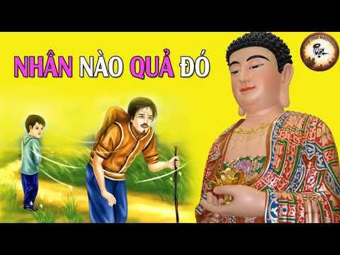 Nghiệp Quả Là Do Ta NHÂN NÀO QUẢ ĐÓ   Chuyện Phật Giáo Nhân Quả Hay Nhất 2018 thumbnail