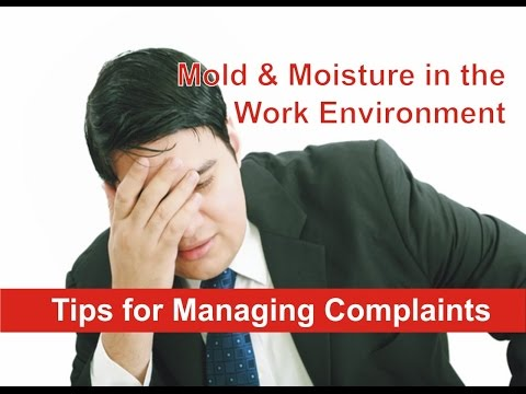 managing the work environment A positive work environment makes employees feel good about coming to work, and this provides the motivation to sustain them throughout the day if you're looking for a new job, then i would say that assessing the work environment is a crucial step you shouldn't skip.