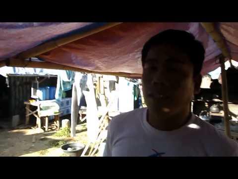 My New Traditional Filipino Hat Philippines - Salakot video