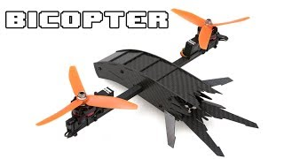The BICOPTER - TERMINATOR inspired RC Copter - only 2 motors?