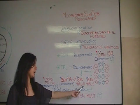Neumonia Nosocomial UCE