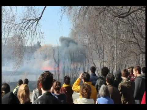 Brush Fire at Back Bay Fens, Boston, March 11 2012