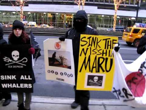 Sea Shepherd Solidarity Protest NYC against Japanese Whaling and Sinking of the Ady Gil 1-08-10 pt1