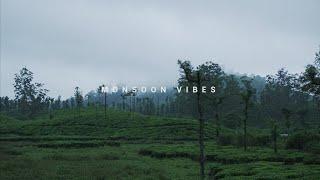 MONSOON WALK - Minute Vibes 02 | Valparai, India - Sony a6300