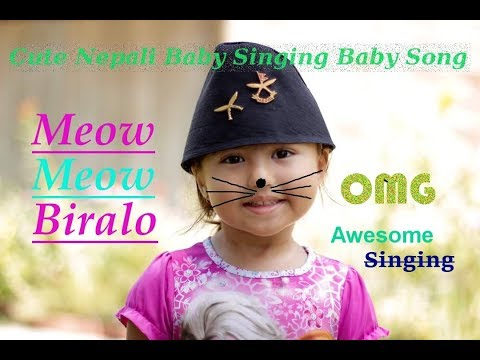 Meow Meow Biralo Nepali Kids Song