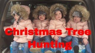 QUADRUPLETS GO CHRISTMAS TREE HUNTING