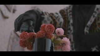 Download Lagu Baltic Balkan feat. El Kasper (Monkey Theorem) - KADRIL (Official Video) Gratis STAFABAND
