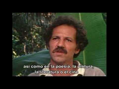 Herzog on Dreams