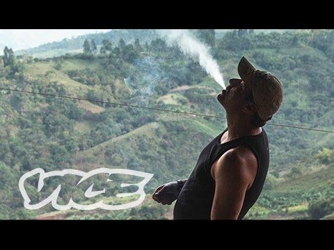 Kings Of Cannabis (full Length Documentary) video