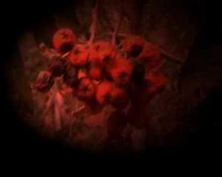 Дети лабиринта - Последняя ночь