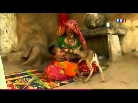 Les Bishnoïs l