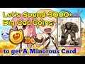 CBT- 3000 Big Cat Coin Spending, to get a Minorous Card, Ragnarok Mobile: Eternal love