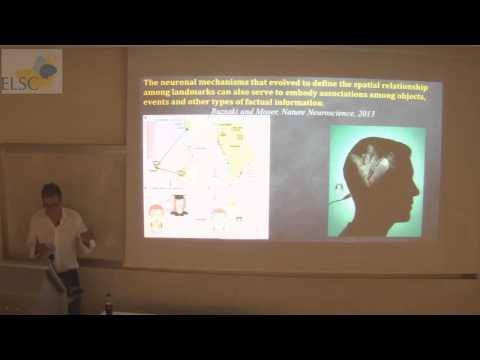 ELSC Seminar: Itzhak Fried