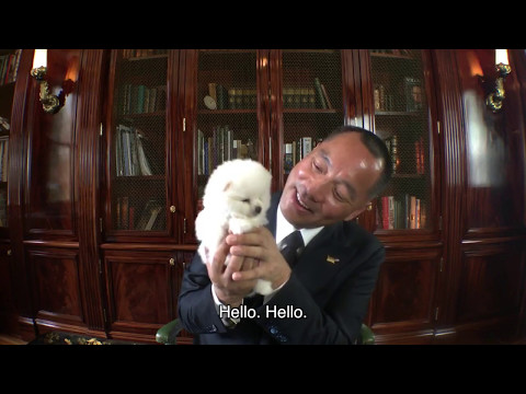 Guo Wengui  - Everything is just Beginning  - Puppy