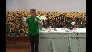 Os desafios das vivências emocionais e sentimentais • José Medrado