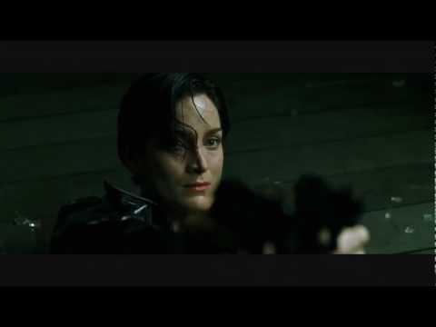 matrix opening scene essay