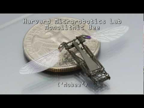 Pop Up Fabrication Of The Harvard Monolithic Bee  Mobee
