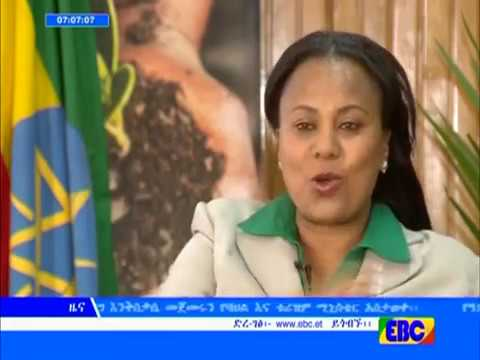 Adwa Victory Day in Ethiopia 2017 - EBC TV