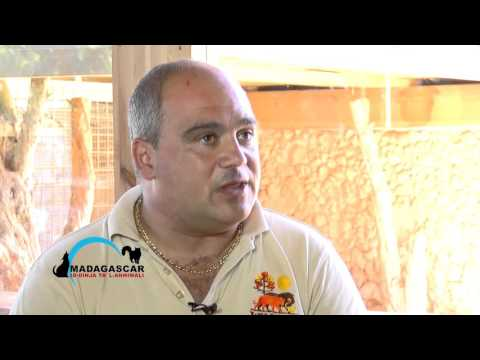 "Madagascar ""Id-Dinja ta' l-Annimali"" - Chris Borg (Wild Life Park)/ Programme 7 - November 2015"