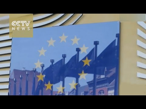 """China """"disappointed"""" at EU not recognizing its market economy"""