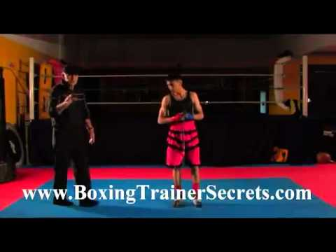 [Boxing Training] | Master Boxing Trainer Secrets - Boxer Training for the Junior Intermediate Boxer Image 1
