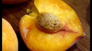 Watch Blur Peach video