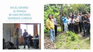 Diseño permacultural  en Quito - Ecuador (permacultura aplicada)