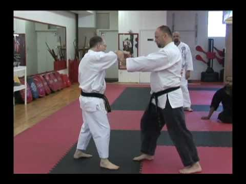 Troy J. Price Fist & Chin-Na Techniques Martial Arts Action Clips Shurite Workshop March-2011.mp4 Image 1