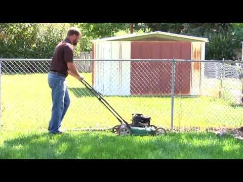 The Importance of Mowing Height to Maintain a Healthy Lawn | From the Ground Up