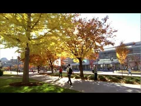 Brigham Young University Rankings This Includes All