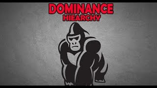 How to Outrank an Alpha Male   The Dominance Hierarchy