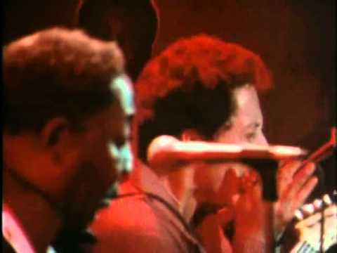 Muddy Waters - The Blues Had a Baby And They Named it Rock And Roll