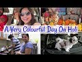 Lagu Holi Day Vlog 2019 | Delicious Food Cooked By My Friend | When My Dogs Go For Night Walk