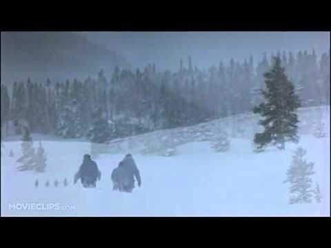 Christmas Vacation 2 10 Movie CLIP   The Griswold Family Christmas Tree 1989 HD small 001 x264