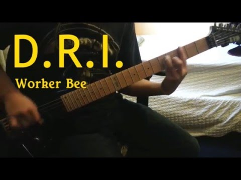 Dri - Worker Bee