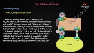 Von Willebrand Disease - Case based webinar discussion usmle step 1