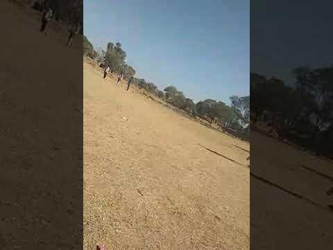 Cricket video 20 january 2019