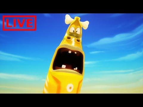 🔴 LIVE LARVA | GIANT LARVA | BEST OF LARVA | Cartoon Movie | Cartoons For Children | LARVA Official