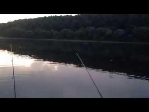 прогноз для рыбалки в коломне
