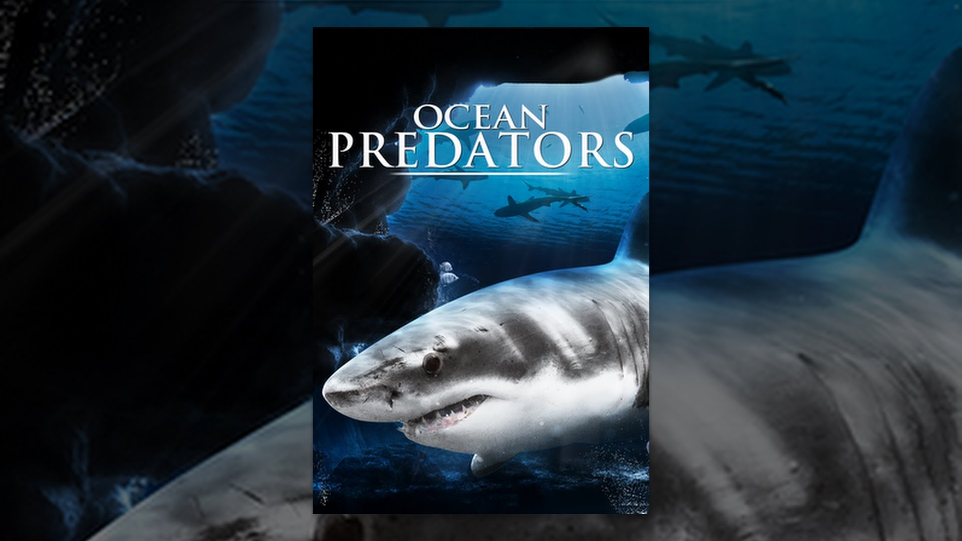 the predators of the ocean The wild is the hunting ground of the most dangerous predators out there, though some predators inhabit urban areas as well some animals are designed for speed and agility which comes in handy in the game of survival.