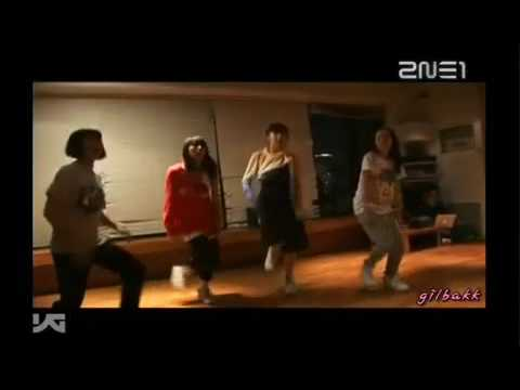 2ne1-i Don't Care Dance Training video