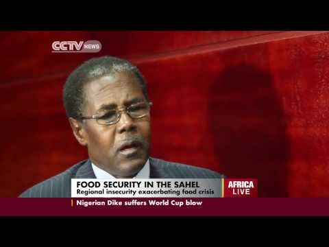 Food Security in the Sahel Region
