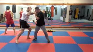 Wing Chun for street fight- TWC Serbia