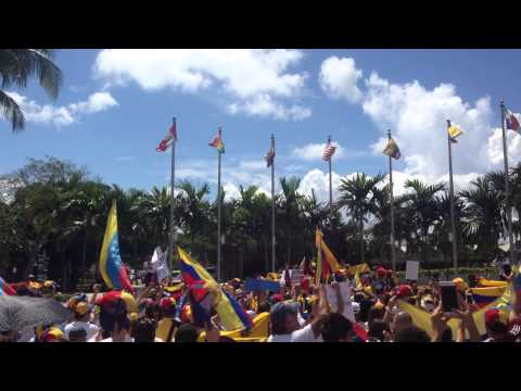 World Protest for a Free Venezuela #30MVamosTodos pt. 3